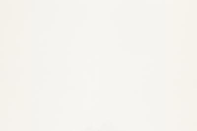 Bright White 100lb. Linen