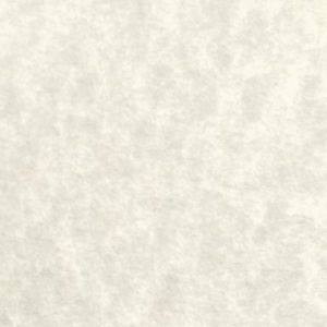 Cream Parchment - Blank 60lb.
