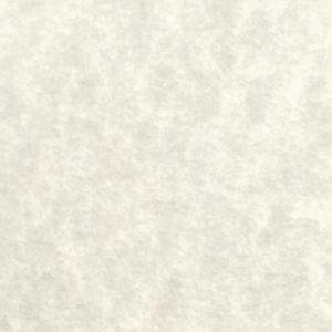 Cream Parchment - Participation 60lb.
