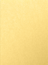 9 x 12 Presentation Folders Gold Metallic