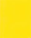 9 x 12 Presentation Poly Folders w/ Brads Yellow
