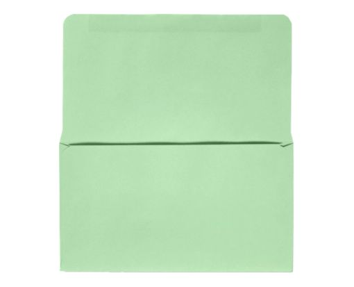 6 3/4 Remittance Envelopes (3 5/8 x 6 1/2) Pastel Green