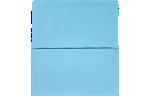 6 3/4 Remittance Envelopes Pastel Blue