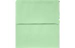6 1/4 Remittance Envelopes Pastel Green